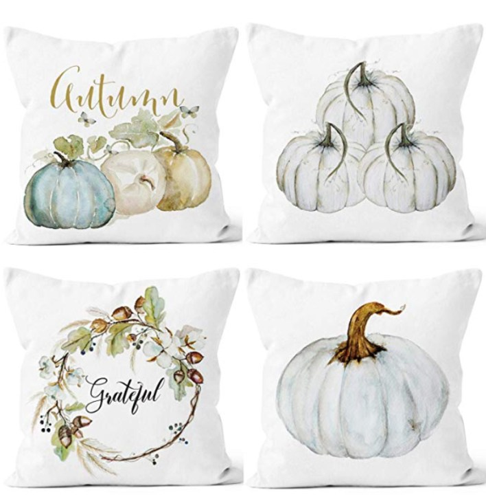 Fall Decor Throw Pillows