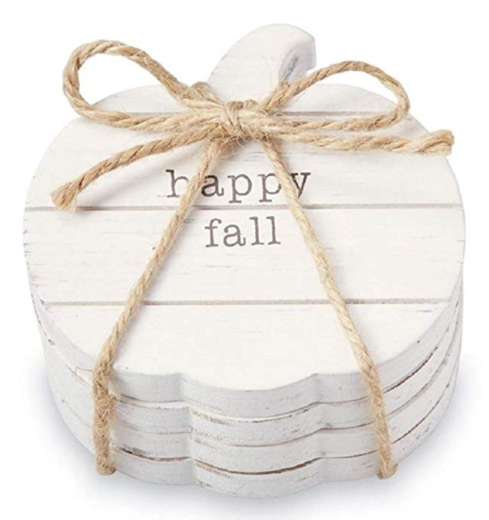 Fall Decor Pumpkin Coasters
