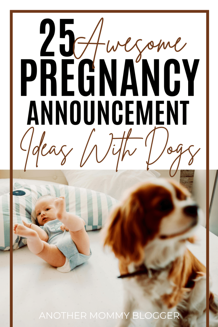 This post is full of fun ways for dogs to announce pregnancy. These are cute baby announcements with dogs.