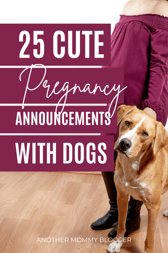This is a list of pregnancy announcements with dogs. These are cute unique baby announcements with your pet. This list has fun ways to announcements pregnancy to family and friends with your dog.
