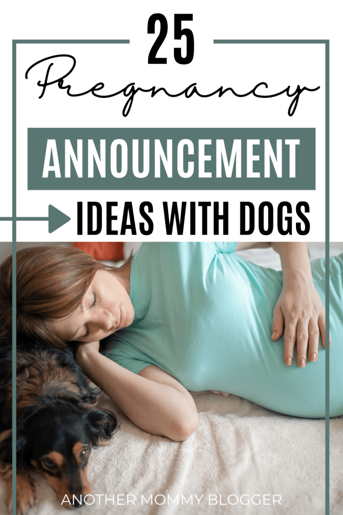 These new pregnancy announcement ideas with dogs are so cute. Have your dog tell everyone you're pregnant with one of these fun pregnancy reveals.