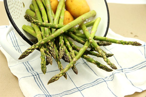 Fresh asparagus stalks spilling out of white colander.