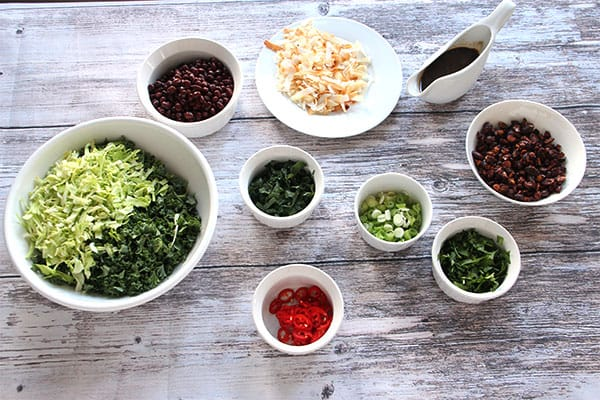 Red chili peppers, chopped kale and cabbage, Adzuki beans, chopped mint and coriander, 5-spice almonds, baked coconut flakes sliced green onions and Tamari dressing in white dishes on board.