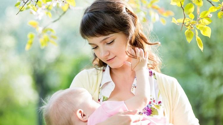 ibu menyusui bayi pemberian asi eksklusif
