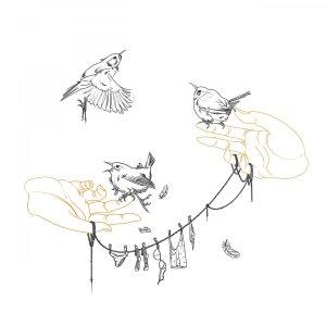 Wrens illustration tattoo design