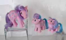 collection-poneys-forum-032