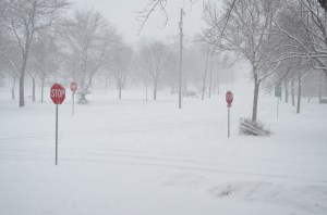 """I was pretty tickled with this picture that I snapped during snow storm Gandolf. I called it """"Make it Stop!"""""""