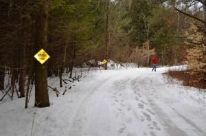 April winding trail