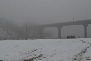 Foggy day 047