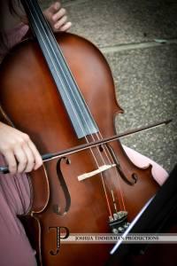 Molly's Cello