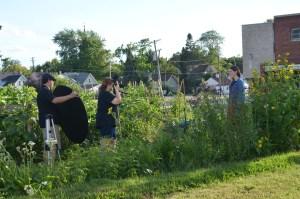Community Garden shot