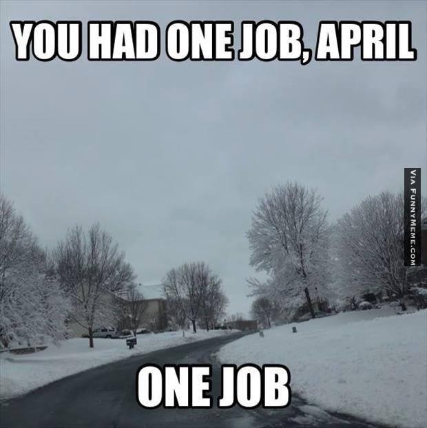 Funny-memes-you-had-one-job-april