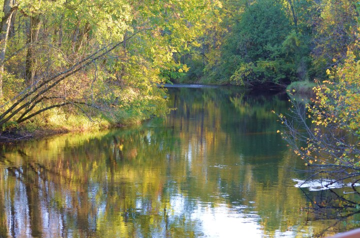 autumn-on-the-river