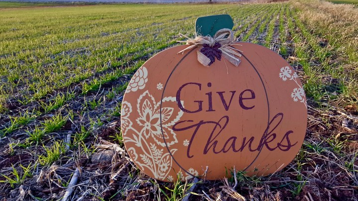 The #Thankful Season