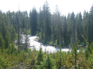 Glacial outwash, Jenny Lake, Grand Teton National Park