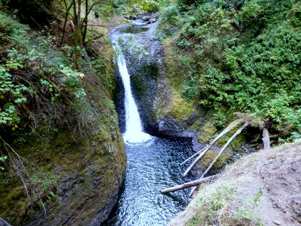 Horsetail Falls - or so I thought.  This may be Upper Horsetail Falls, Oregon