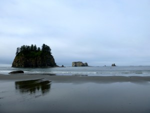 View of sea stacks on Second Beach, Olympic National Park