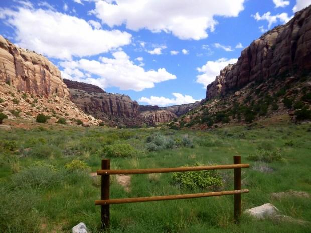 Indian Spring Canyon, Utah