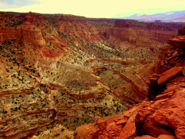 View of the canyon from near Goosenecks Overlook, Capitol Reef National Park, Utah