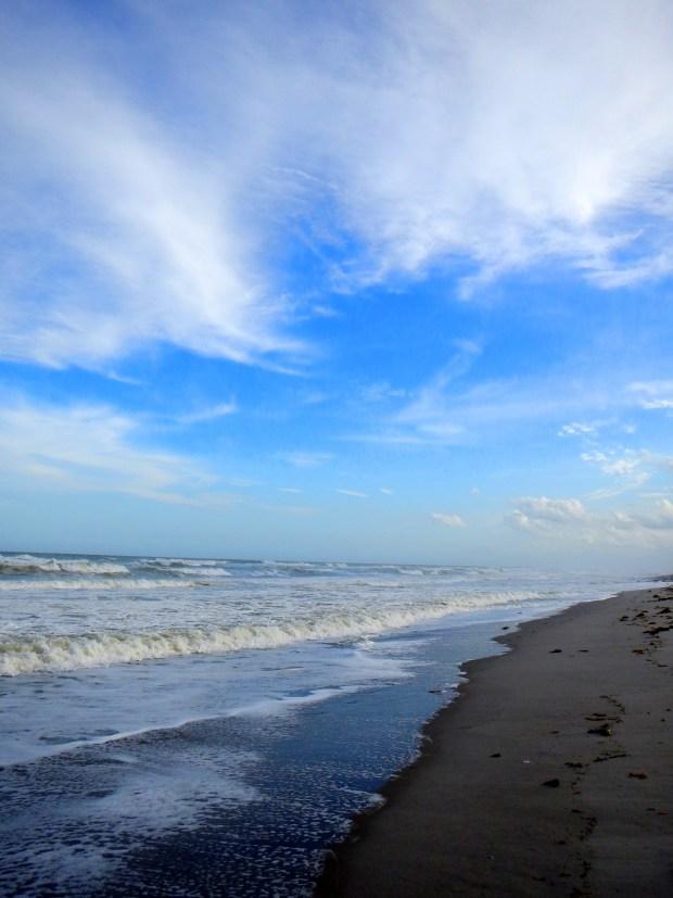 Beach, Canaveral National Seashore, Florida