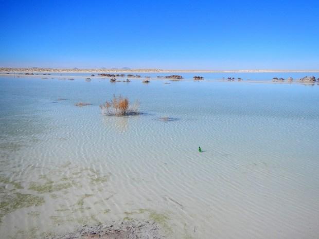 Salt Flat, Texas