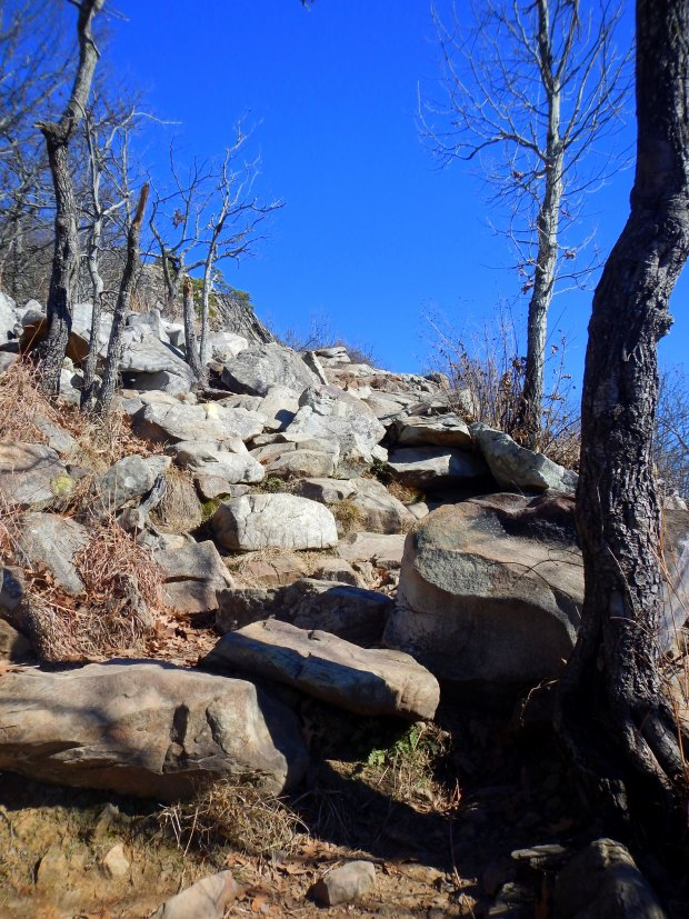 Steps on the West Summit Trail, Pinnacle Mountain State Park, Arkansas