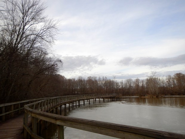 Boardwalk over Wood Deer Lake, Cypress Grove Nature Park, Jackson, Tennessee