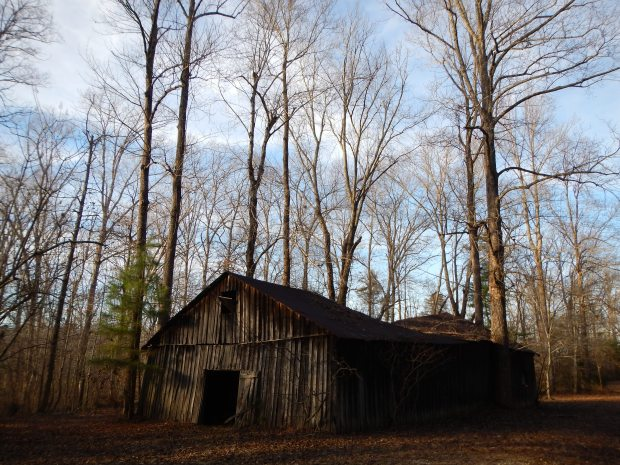 Barn, Natchez Trace State Park, Tennessee