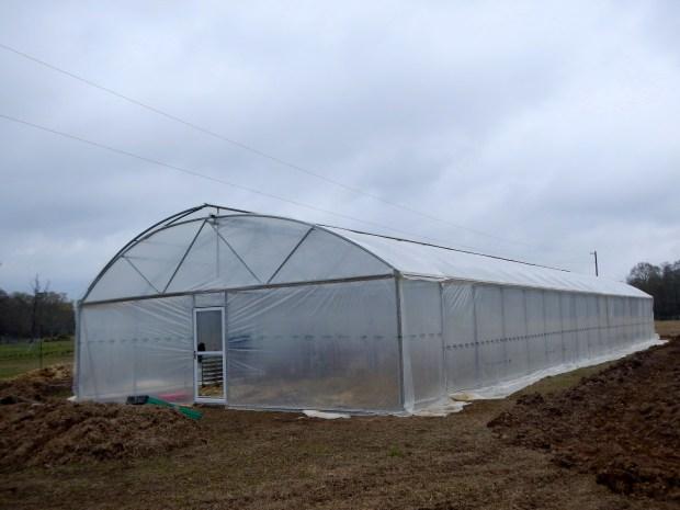 The new greenhouse at New Day Farm, Clinton, Louisiana