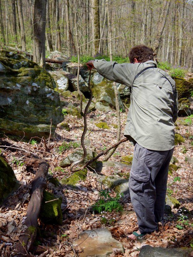 Jonathan holding a Brown Rat Snake, Shake Rag Hollow, Perimeter Trail, Sewanee Domain, Tennessee