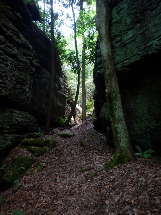 Split Bow Arch Trail between the cracks approaching the arch, Big South Fork Recreation Area, Kentucky
