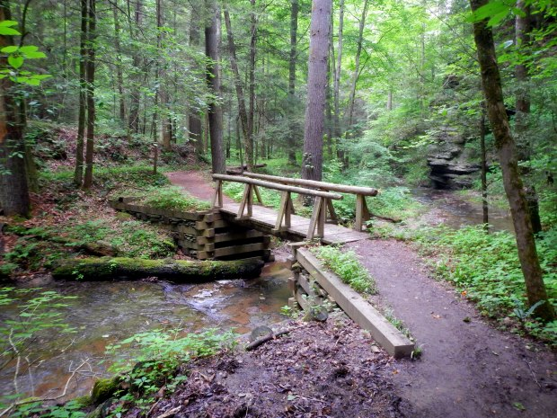 Second bridge, Whittleton Branch Trail, Daniel Boone National Forest, Kentucky