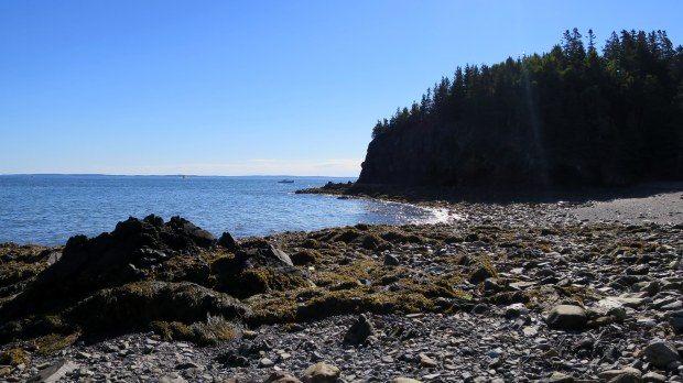 Backside of cliff behind Owls Head Light Station, Owls Head, Maine