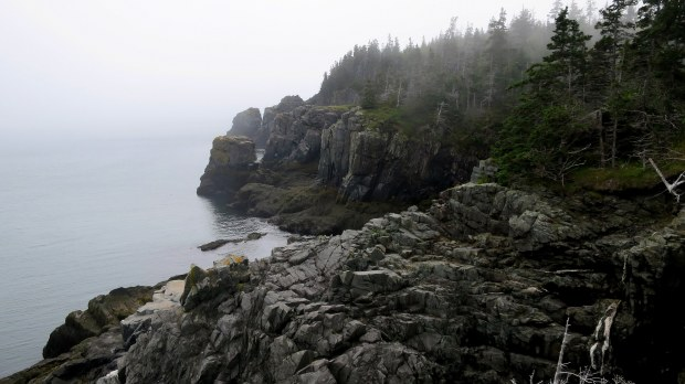 View of the bluffs from Coast Guard Trail, West Quoddy Head Lighthouse, Lubec, Maine
