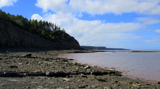 Tide coming in, Joggins Fossil Cliffs, Nova Scotia, Canada