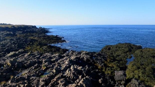 Basalt near Western Light, Brier Island, Nova Scotia, Canada