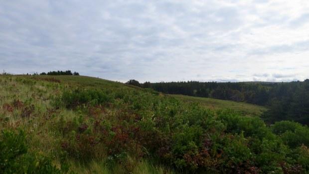 Walking up Meditation Hill, Cnoc na Smuain Trail, West Mabou Beach Provincial Park, Nova Scotia, Canada