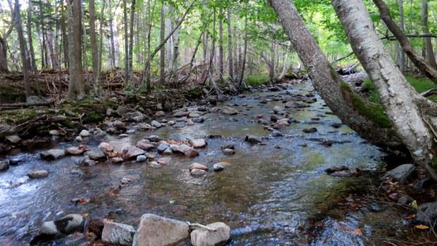 MacIntosh Brook, MacIntosh Brook Trail, Cape Breton Highlands National Park, Nova Scotia, Canada