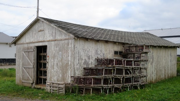 Fish/bait shed full of lobster traps, Gaspereaux Wharf, Prince Edward Island, Canada