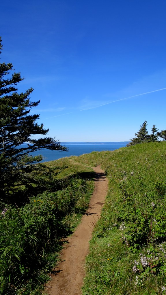 Trail along headland, Cape Split Trail, Cape Split Provincial Park, Nova Scotia, Canada
