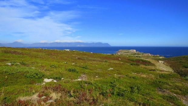 Skirting the hill: My first glimpse of White Point, Cape Breton Island, Nova Scotia, Canada