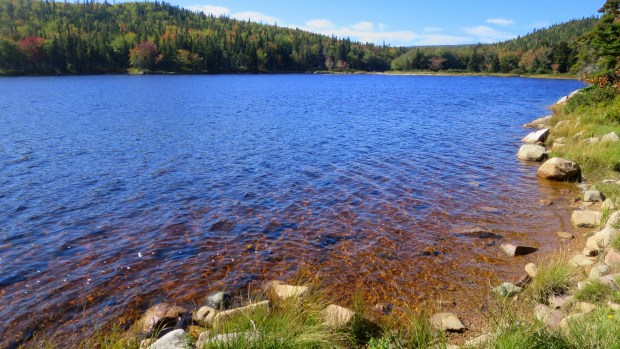 Near Jigging Cove, Cape Breton Highlands National Park, Nova Scotia, Canada