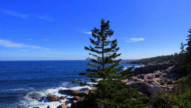 Green Cove, Cape Breton Highlands National Park, Nova Scotia, Canada