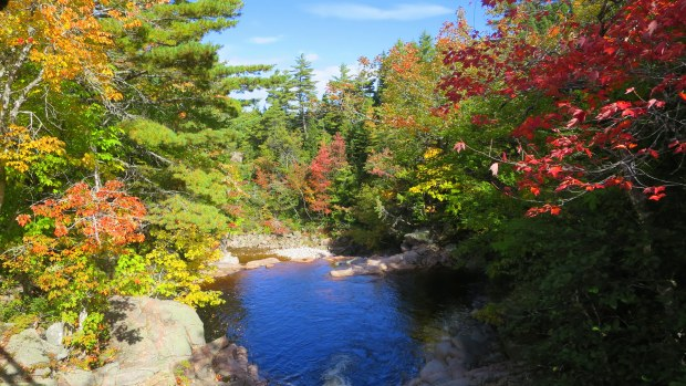 Black Brook, Mary Ann Falls Trail, Cape Breton Highlands National Park, Nova Scotia, Canada