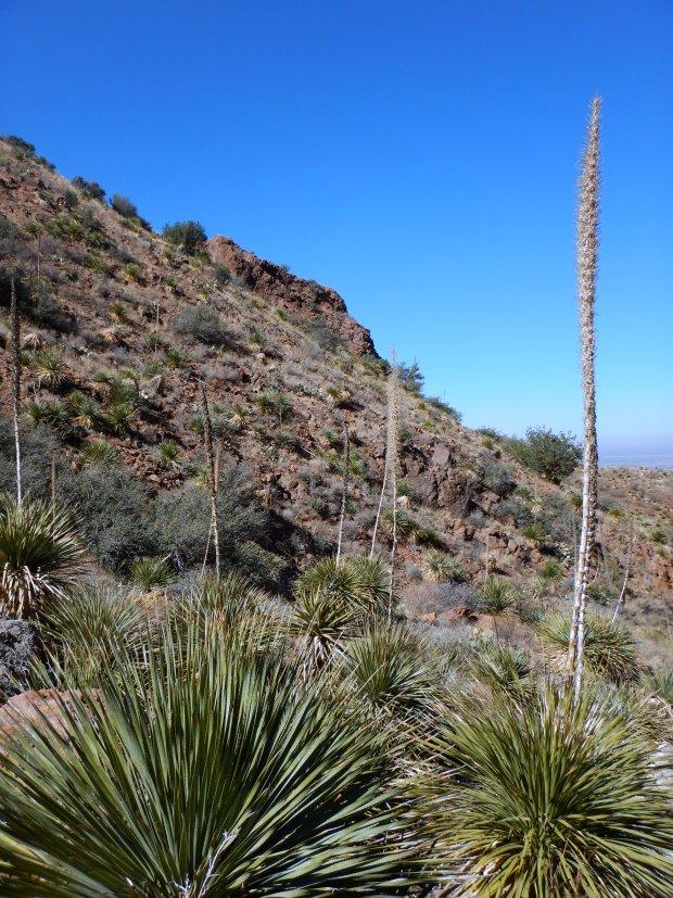 Aztec Caves Trail, Franklin Mountains State Park, El Paso, Texas
