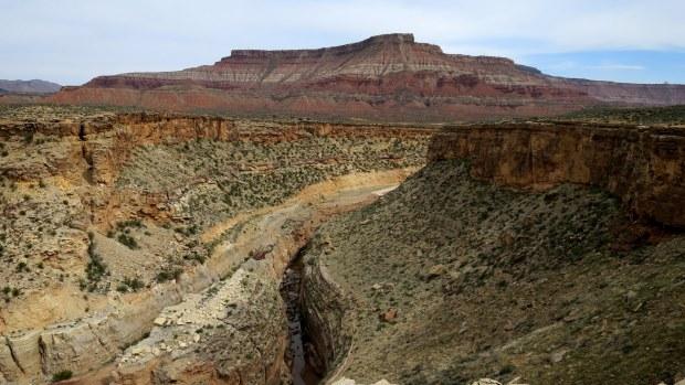 Rim of the Virgin River Canyon, Canal Trail, Hurricane Cliffs Recreation Area, Utah