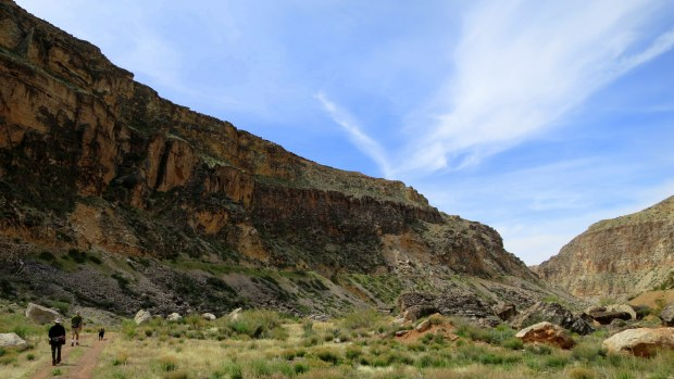 Hiking in a wide section of the canyon, Canal Trail, Hurricane Cliffs Recreation Area, Utah