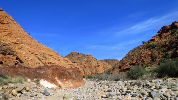 The wash goes wide and deep, Red Cliffs National Conservation Area, Utah