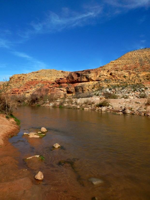 Gorge, Virgin River Canyon Recreation Area, Arizona