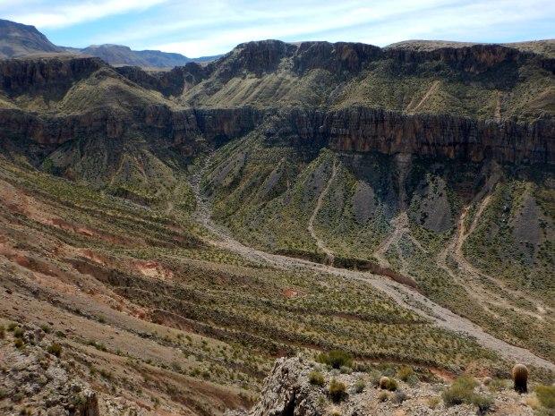 Another view into the canyon, Virgin River Canyon Recreation Area, Arizona